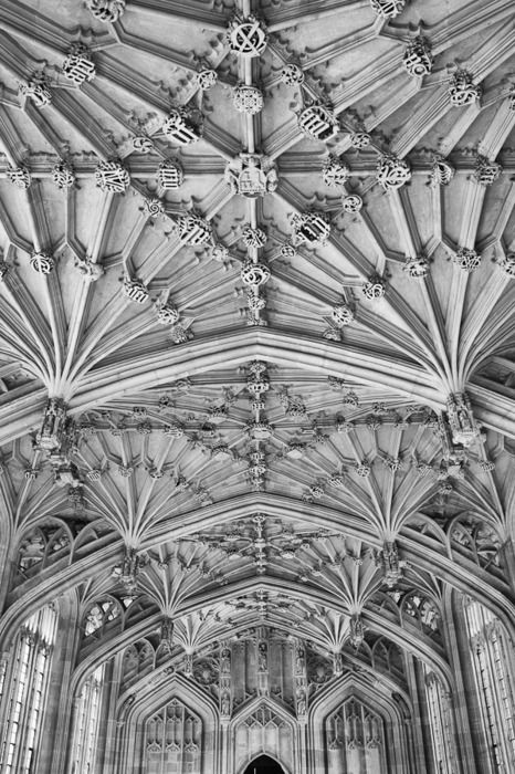 Divinity School, Oxford University
