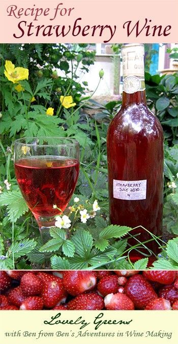 Strawberry Wine Recipe. I've tried this wine for the first time when I was at the office of Befdord cleaners (http://www.cleanersbedford.co.uk/). It's amazing!