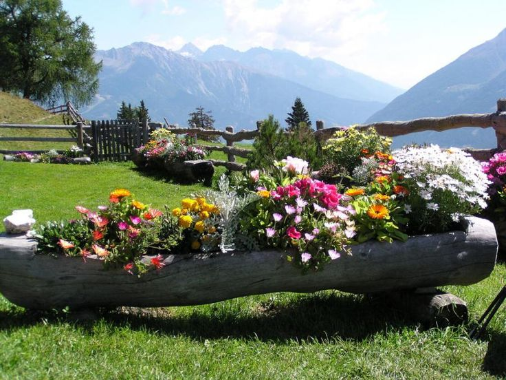 I LOVE LOVE LOVE this idea for flowers!!!!  And wow, what an amazing yard with a cute wood fence and a GORGEOUS view of the mountains!!!