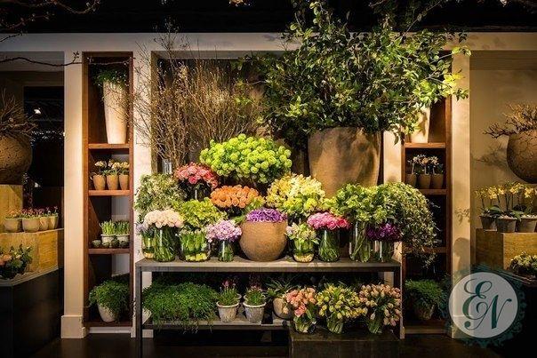 витринистика цветочного магазина: 13 тыс изображений найдено в Яндекс.Картинках
