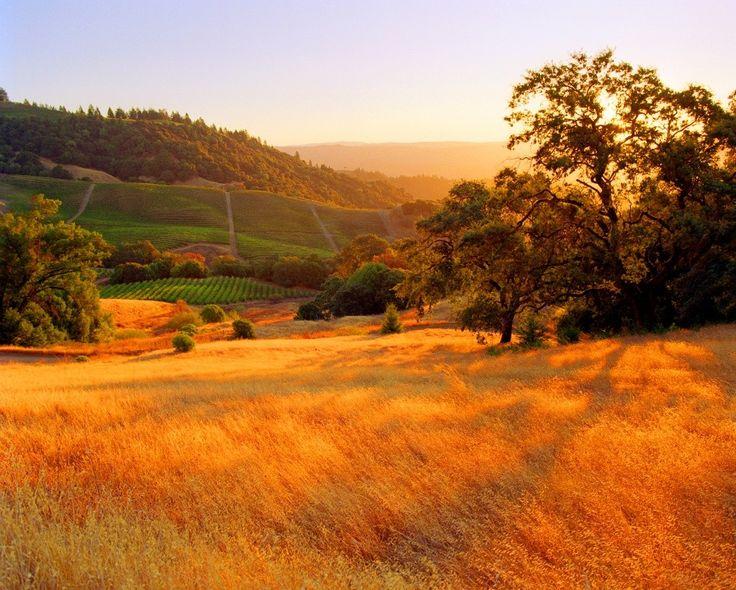 Округ Сонома, Калифорния, США