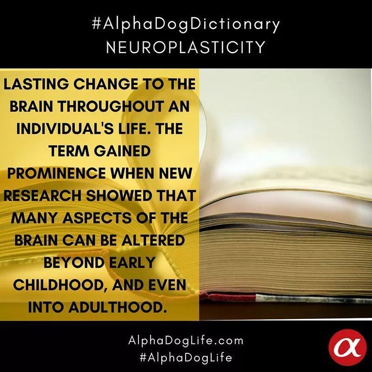 """#AlphaDogDictionary #WordOfTheDay... . . . #Neuroplasticity: also known as #BrainPlasticity or #NeuralPlasticity, is an umbrella term that describes a lasting change to the brain throughout an individual's life course. The term gained prominence in the latter half of the 20th century when new research showed that many aspects of the brain can be altered (or are """"plastic"""") even into adulthood  This notion is in contrast with the previous scientific consensus that the brain develops during a…"""