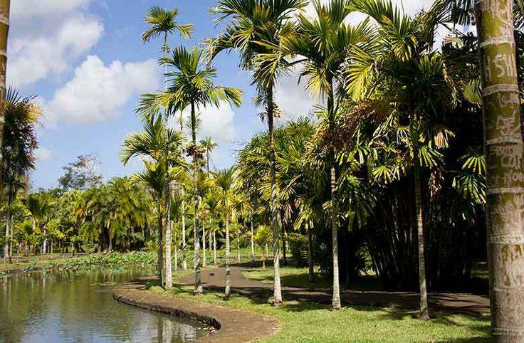 10 cose da fare a Mauritius oltre a stare in spiaggia