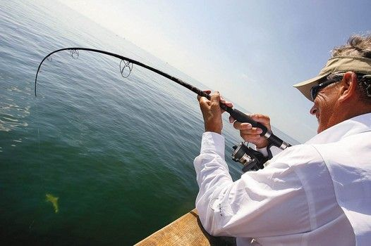 60 best images about gulf of mexico on pinterest islands for Surf fishing gulf shores