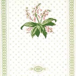 Wallpaper with lily of the valley pattern on white and green ground with stripe.