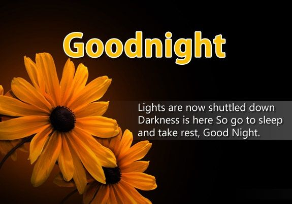 Good Night Wishes Images – Gud Nite Wishes Pics