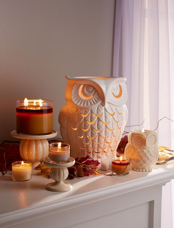 Have a hoot with our #welovefall decor!