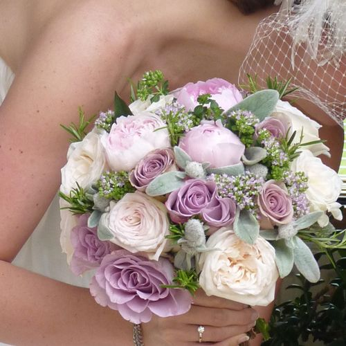 ivory garden rose dusty miller and lavender rose bouquet firenza floral