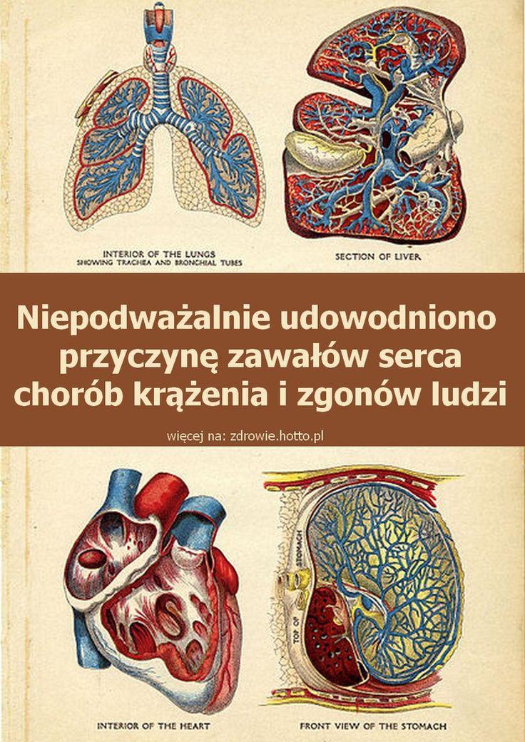 Niepodważalnie udowodniono przyczynę chorób krążenia, zawałów serca, zgonów