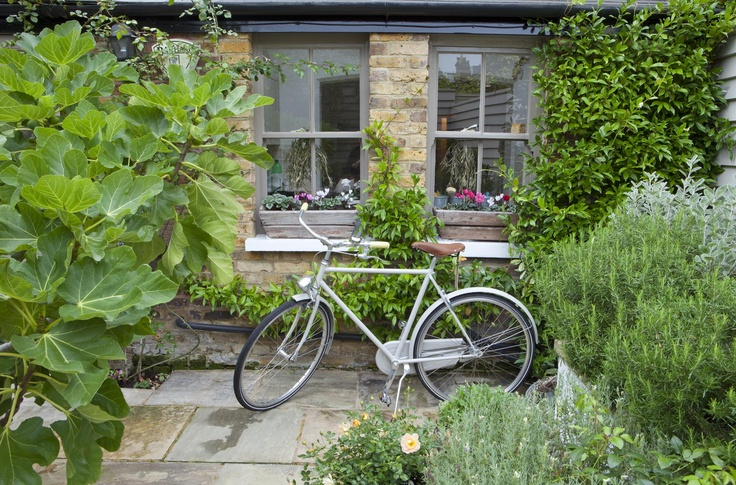 Leopoldina Haynes' garden, grey bicycle and grey windows