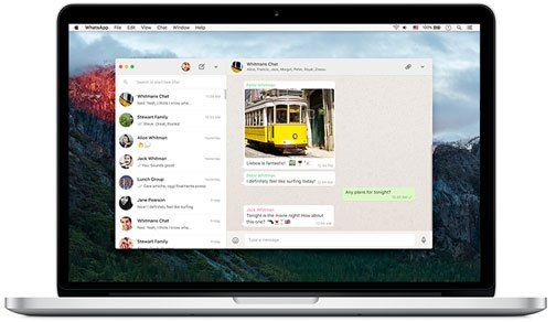 WhatsApp lanza aplicación de escritorio para Windows y OSX