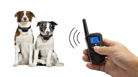 Wellturn WT-768-L Waterproof Electronic Remote Pet Trainer