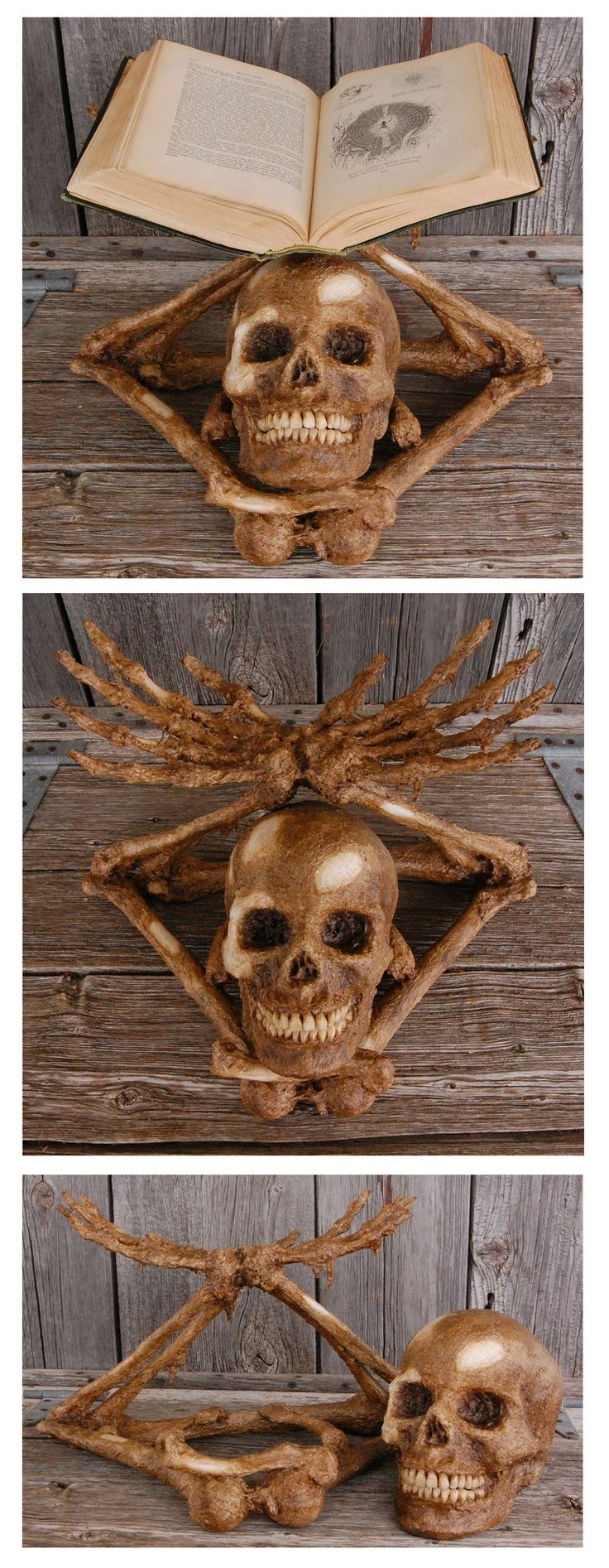 Awesomely creepy skeleton book shelf for sale by Behind the Rows Studios at MoreThanHorror.com