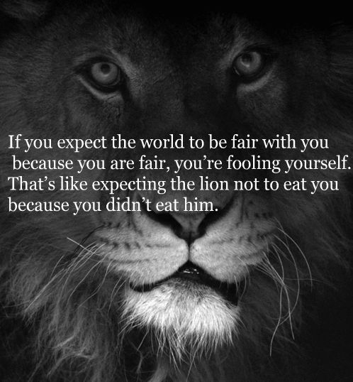 If you expect the world to be fair with you because you are fair, you're fooling yourself. That's like expecting the lion not to ear you because you didn't eat him.