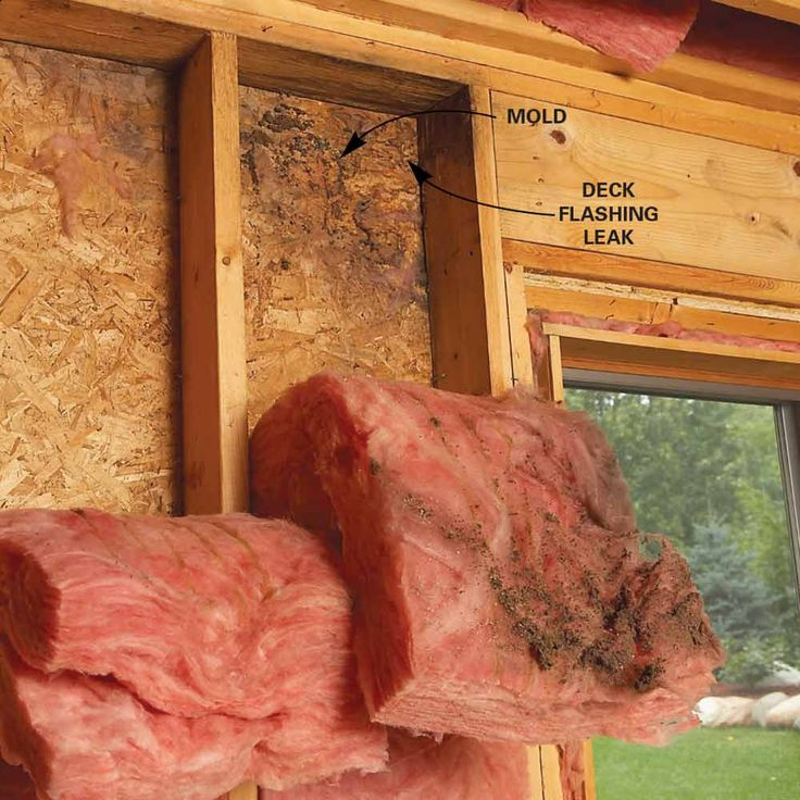 10 Tips For Removing Mold and Mildew Tips