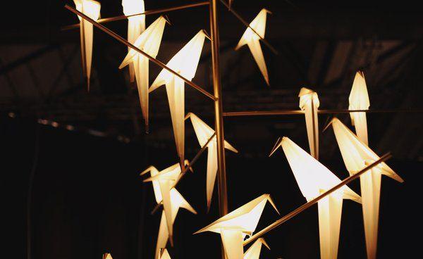 Umut Yamac's Perch Lights