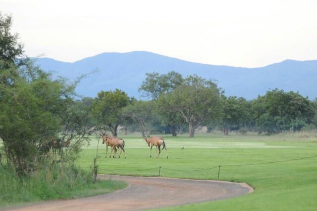 Golfcourse, Zebula, South Africa
