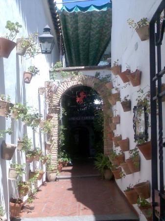 Foto de El Caballo Rojo, uno de los restaurantes cordobeses con más solera.