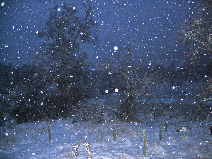 Now it's really snowing: It S, Places
