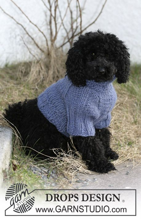 Douglas Dog Knitting Pattern : DROPS dog coat in ?Eskimo?. ~ DROPS Design....free Crochet e tricot per cag...