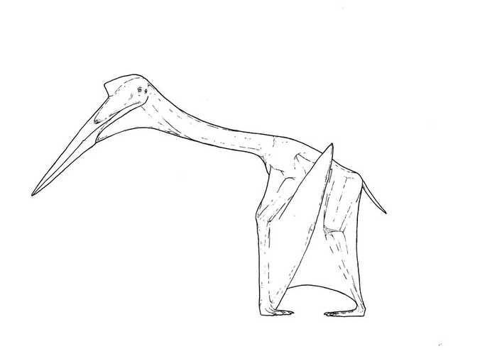 Quetzalcoatlus Coloring Page Coloring Pages Dinosaur Coloring Pages Animal Coloring Pages