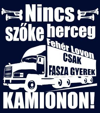 Fasza gyerek kamionon