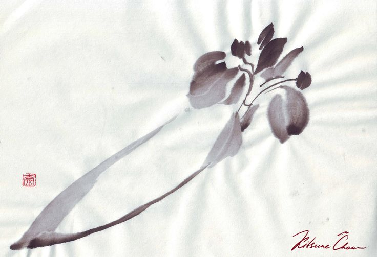 #сумиэ #японскаяживопись #графика #тушь #чернобелое #природа #япония #sumie #Japanesepaintings #ink #blackandwhite #nature #Japan #лилия #Lily #flowers #цветы