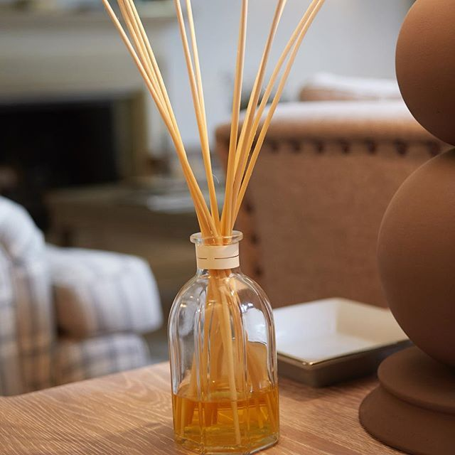 We love to use reed diffuser sticks to keep our homes smelling lovely and fragrant all year. What scents do you like to use?