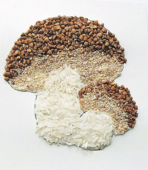Аппликации и поделки из семян и круп | 90 фотографий