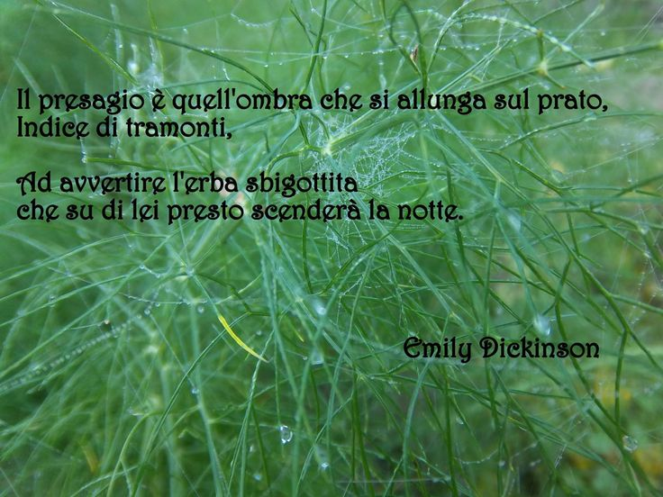 Emily Dickinson -poem