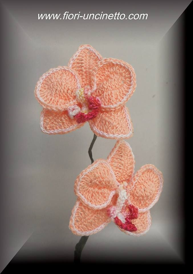 Ravelry: Orchid A by CreativityClaudia