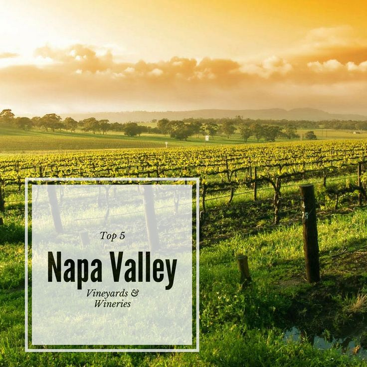 Top 5 Napa Valley Wineries - Confessions of a Northern Belle