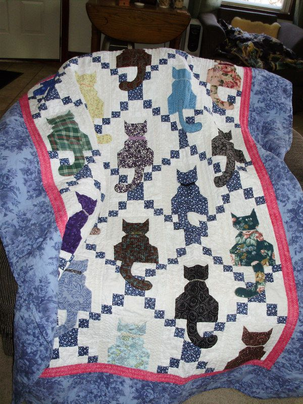 The purrfect quilt - Irish chain and kitties!  Caterday Quilts: May 17 - 24 Blocks