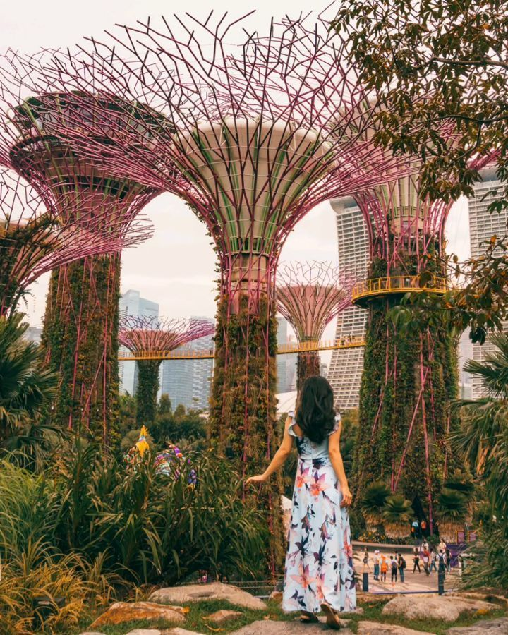 The Stunning Supertree Grove At Gardens By The Bay In Singapore Travel Couple Sue Renesh Www Travelinour Gardens By The Bay Amazing Gardens Travel Couple