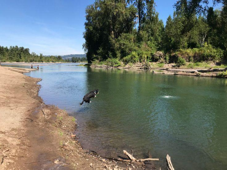 columbia river mental health services vancouver washington