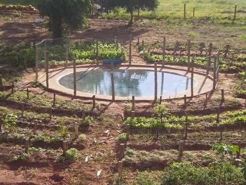 Les 64 meilleures images propos de jardin permaculture for Jardin 150m2