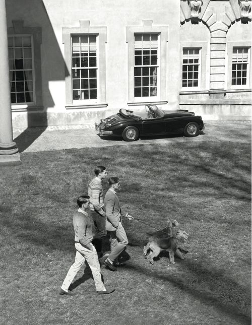 Airedales help the Ivy Leaguers because they bring their natural class whereever they go ... :0)
