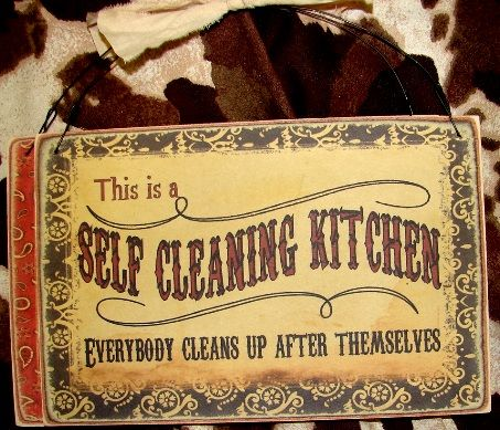 1000 images about clean or not to clean funny on for Perfect kitchen cleaner