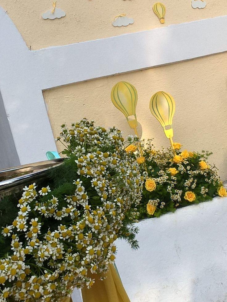 #airballon theme #chamomile