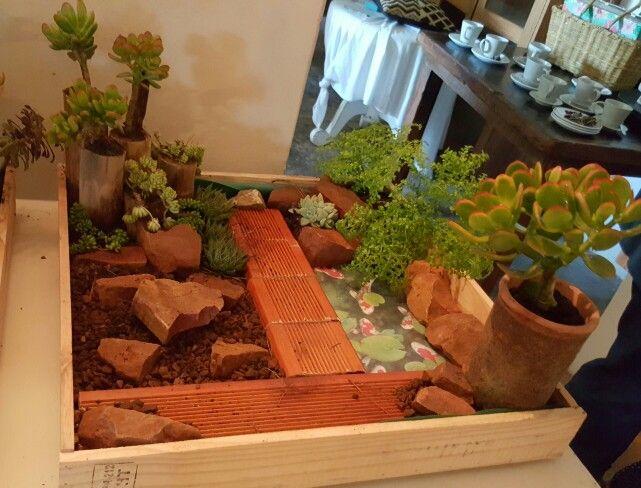 Miniature garden created for garden talk in Jeffreys Bay by Barbara Eke Designs