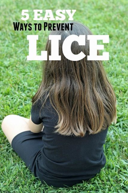 5 Easy Ways to Prevent Lice | Life as MOM - with summer camp and other friend-y activities coming up, be prepared to PREVENT lice.