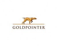 GoldPointer