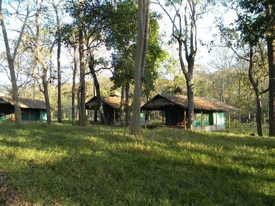 Tents in Parambikulam Tiger reserve.