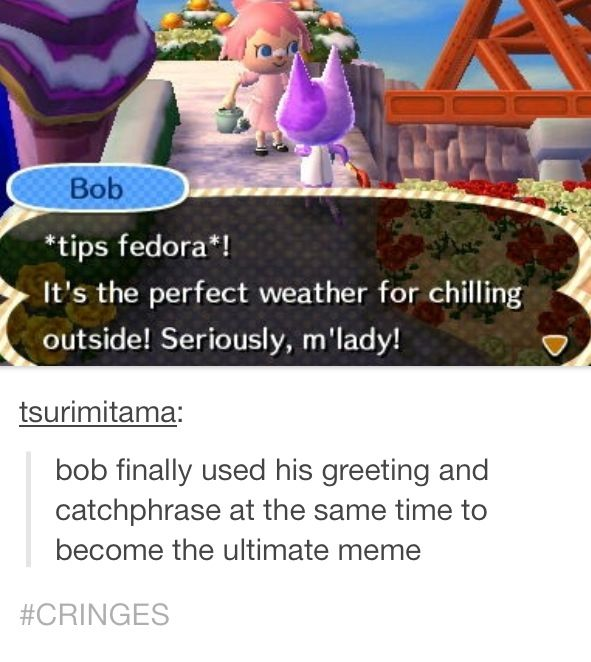 355 best animal crossing images on pinterest videogames video internally cringes but good for you m4hsunfo Images