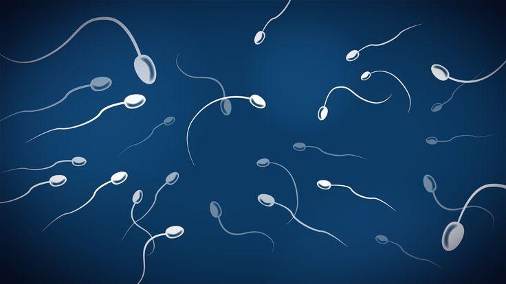 Suomi vuonna 2017: Kun nainen haluaa sterilisaation, mieheltä pyydetään suostumus – kolme tarinaa. THL:n ohjeistuksen mukaan puolison vastustus ei saa estää sterilointia.