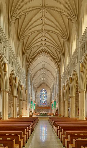 Roman Catholic Cathedral of Saint Peter, in Belleville, Illinois, USA - nave by msabeln, via Flickr: Bellevil Illinois, Favorite Places, Beautiful Places, Bridesmaid, Bellevill Illinois, Architecture, Church Cathedrals, Awesome Places, Peter Cathedrals