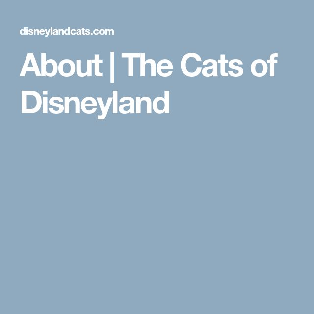 About | The Cats of Disneyland