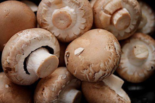 Champignons zijn een rijke bron van twee antioxidanten die veroudering krachtig verslaan. Sterker nog: de paddenstoel is hier de rijkste bron van. Slechts 5 champignons per dag verlagen de kans