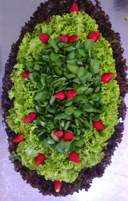 ALFACE ROXA: A coloração roxa intensa se deve á  presença em larga quantidade da antocianina, substância que confere ao alimento uma cor...