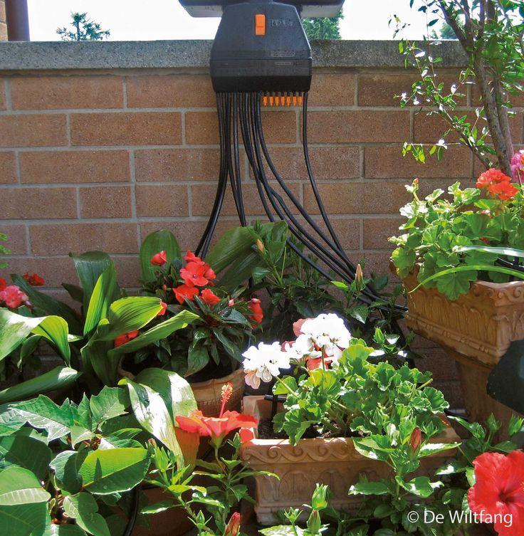 Waterdruppelingssysteem voor maximaal 16 planten. Kan tot 18 dagen uw planten van water voorzien, afhankelijk van het aantal druppelaars wat aangesloten wordt en de snelheid van het waterdoorvoer.   Ideaal voor als u op vakantie gaat en voor de planten in de kas.  Het automatische systeem zorgt er voor dat de plantjes niet droog komen te staan.